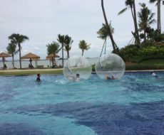 Cape Cabana-water-walking-ball-forest-city-activity-outdoor